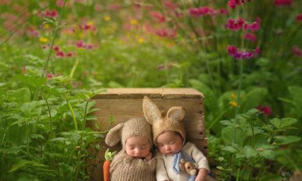Koleksi Foto Baby yang Unik Menggunakan Photoshop