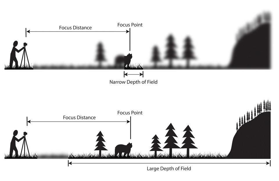 Memahami Istilah Depth Of Field Dalam Fotografi