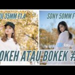 Fujifilm 35mm f1.4 vs Sony 50mm f1.4 | Kamera mirrorless Full Frame vs APSC